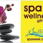 Spa & Wellness Gift Card