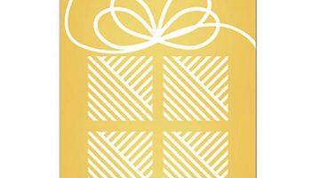 $100 Vanilla American Express Gift Card