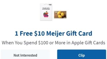 Meijer $100 Apple